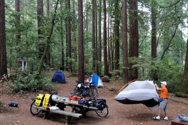 Nice campsite nestled amongst the Redwoods.